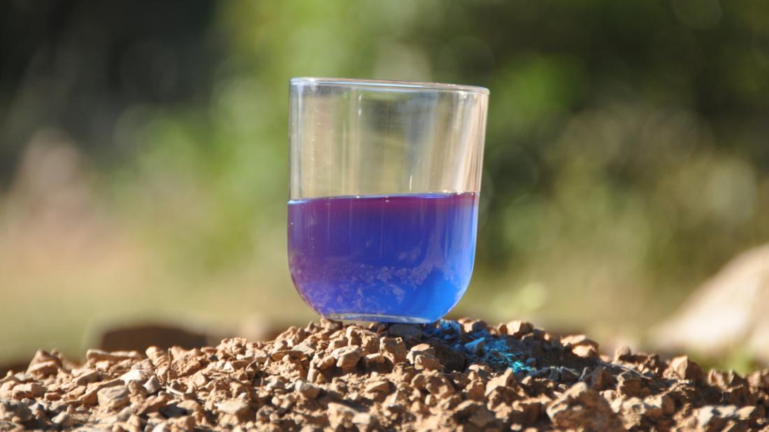 La phycocyanine : composant précieux de la spiruline
